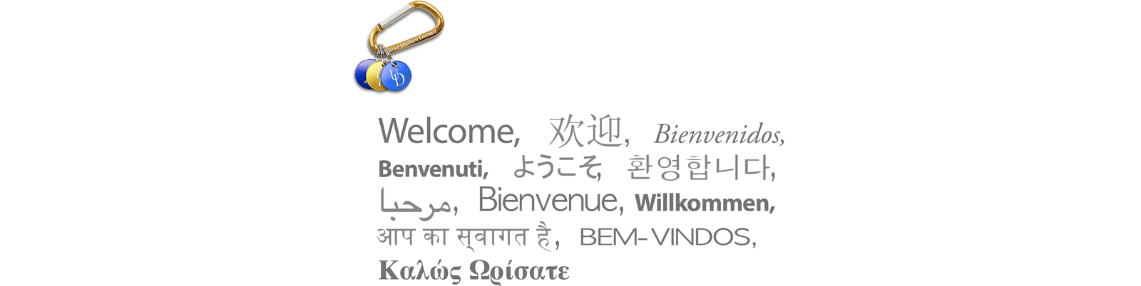 Welcome: NGSO 2019